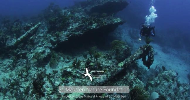 nature foundation st maarten